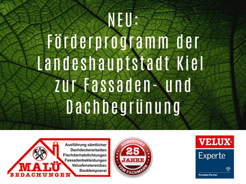 Förderprogramm der Landeshauptstadt Kiel zur Fassaden- und Dachbegrünung